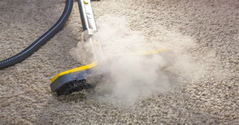 can you steam clean an rug steam vs carbonating cleaning methods