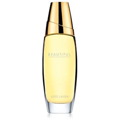Este Lauder Intuition By Luzi Produck Bibit Parfum Murni 550 best images about perfume in การจ ดการการตลาดระด บโลก on cologne
