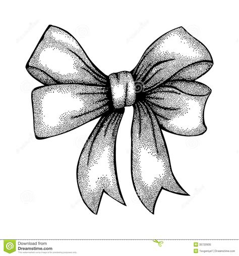 beautiful ribbon tied in bow freehand drawing in stock