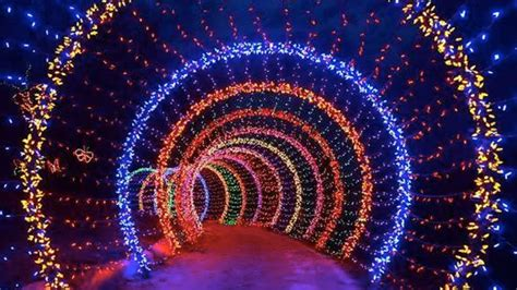ditmas oark christmaslight displat 10 best places to see lights in new york