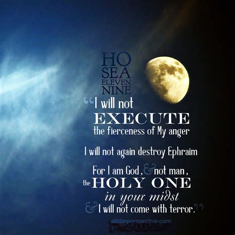 hos images hosea 11 and 12