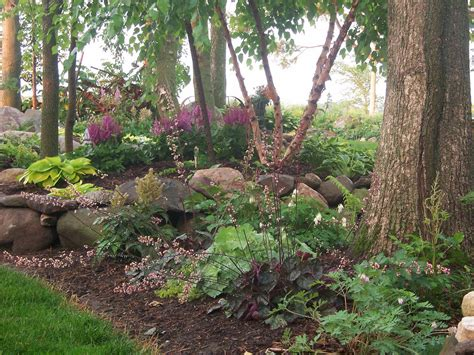 good shade trees for backyard 100 1710landscaping gardens shade garden hostas flickr