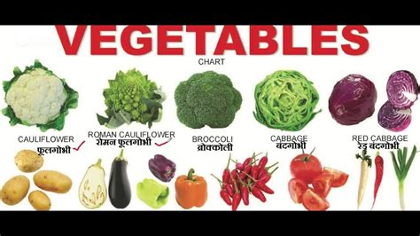 vegetables names vegetables names