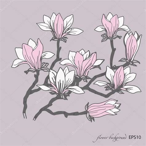 magnolia flower template magnolia flower pattern 스톡 벡터 169 tatianadavidova 63657951