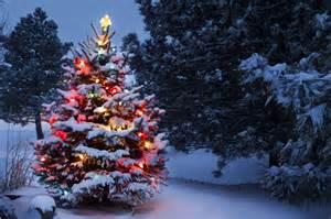 Snow covered christmas tree jigsaw puzzle game puzzlemobi