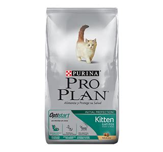 Proplan Kitten 1 gama pro plan 174 kitten purina pro plan m 233 xico