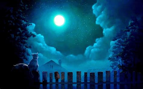 moon and light of moonlight at sky near sea poetic nature
