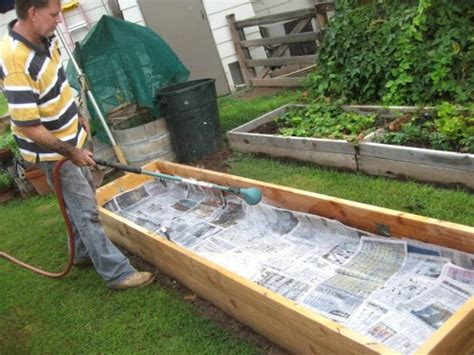 raised bed vegetable garden diy  garden inspirations