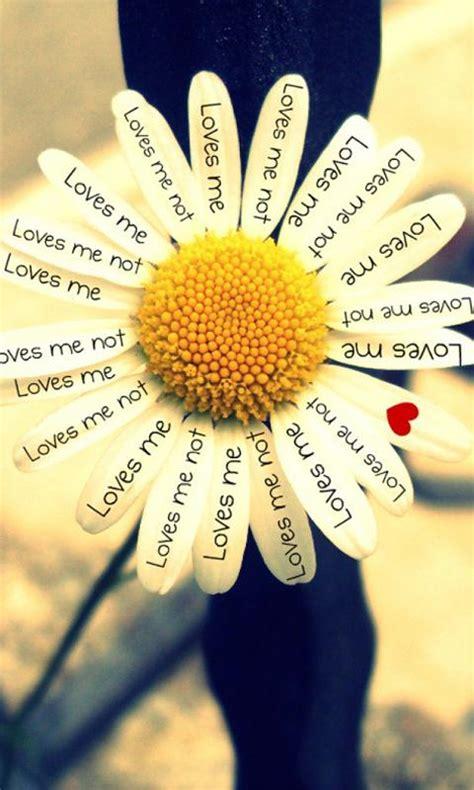 imagenes en ingles lindas palabras en ingl 233 s bonitas imagui