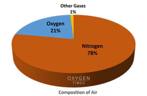 Percent Oxygen In Room Air how does an oxygen concentrator work