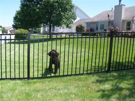 Pricing For Fencing For A Backyard by 25 Best Ideas About Aluminum Fence On