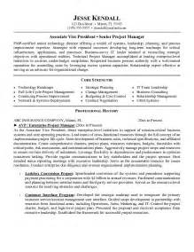 professional resume writers information technology