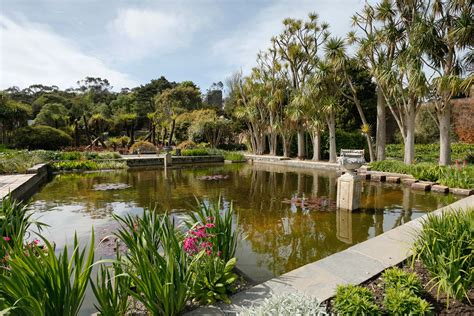 11 Top Quality B Bs Logan Botanic Gardens
