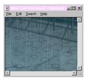 tab transparent gif  gifer  necage