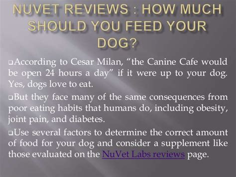 how much should you feed a according to cesar milan the canine cafe wouldbe open 24 hours a day if it were