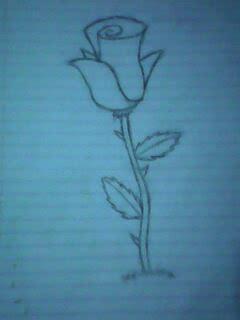 imagenes de flores dibujadas pin pictures of imagenes rosas dibujadas lapiz hawaii