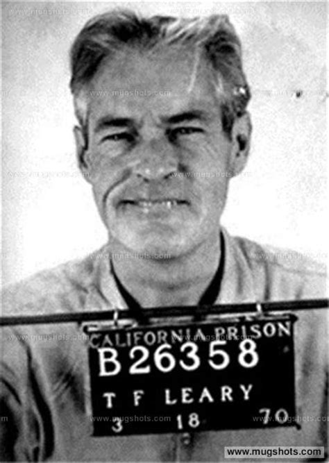 the most dangerous in america timothy leary richard nixon and the hunt for the fugitive king of lsd books notable criminal records the papillon foundation
