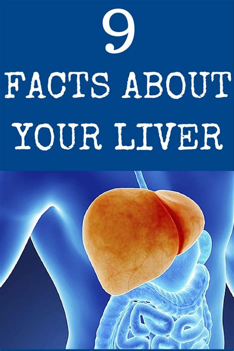 How Often Should You Detox Your Liver by 262 Best Health Images On Health Wellness And