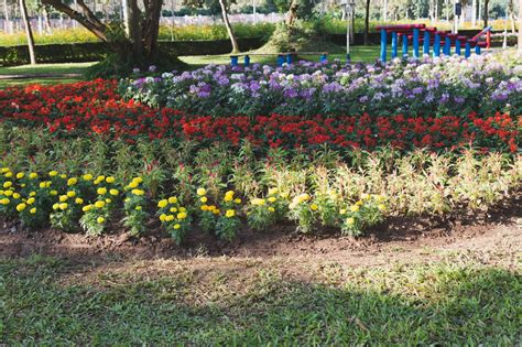 Flower Garden Layouts Flower Garden Layout Design Ideas That Ll Make Your Neighbors Jealous