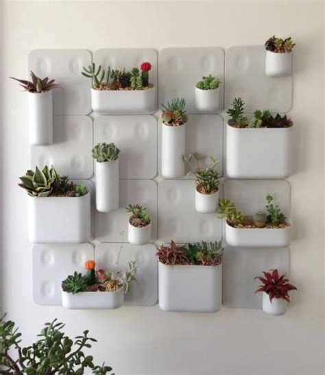 indoor wall garden gardens shark tank and urban on pinterest