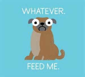 Feed Me Meme - whatever feed me tshirtvortex