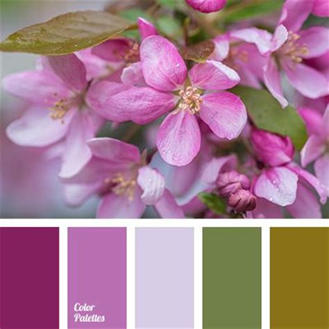 colors that match pink 17 best images about all color palette on pinterest