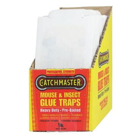 best mouse traps home depot carpenter bees do they sting