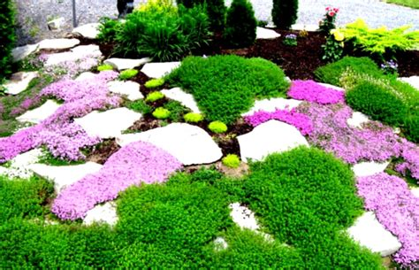 garden landscape ideas simple landscaping ideas for front yard on a budget