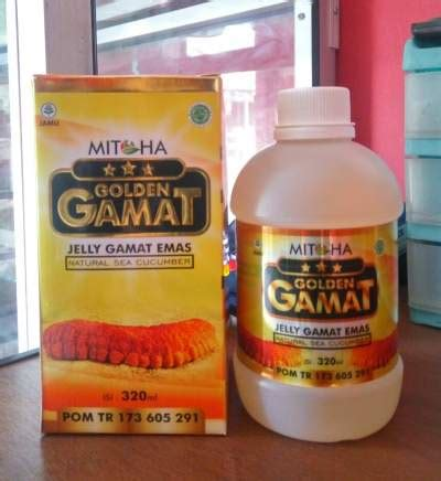 Jelly Gamat Emas jelly gamat emas golden gamat manfaat golden gamat