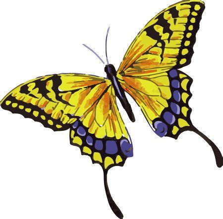 24 best yellow butterfly meaning images on 24 best yellow butterfly meaning images on
