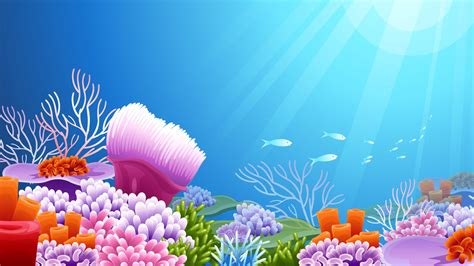 vector colorful coral reef hd wallpaper wide hd wallpapers