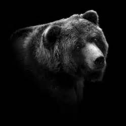 Charcoal Duvet Cover Portrait Of Bear In Black And White Photograph By Lukas Holas