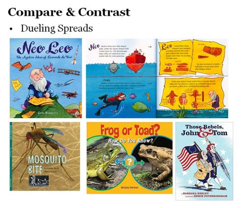 compare and contrast picture books 74 best text structures images on