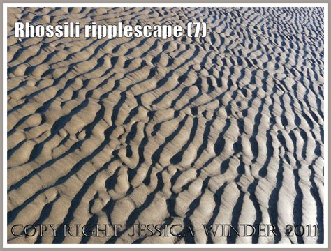 patterns in nature revision sand ripple images jessica s nature blog