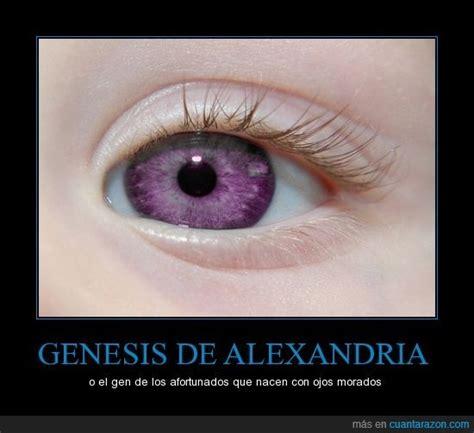 imagenes de ojos violetas curiosidades ojos violetas que configuraci 243 n gen 233 tica