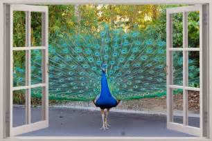 Peacock Wall Mural 3d Window View Beautiful Peacock Wall Sticker Mural Art