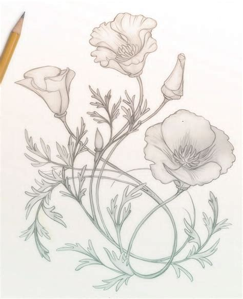 california poppy tattoo designs best 25 california poppy ideas on
