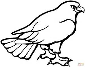 hawk 3 coloring page free printable coloring pages