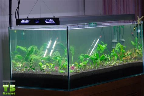 T5 Light Fixtures For Aquariums Best Aquarium Lights T5 Fluorescent Lights T5 Grow Light Fixtures