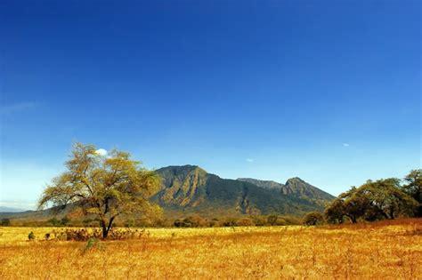 pesona menakjubkan taman nasional baluran sebagai africa
