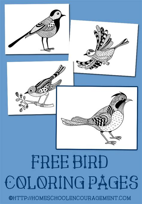 printable bird journal 148 best coloring pages images on pinterest coloring