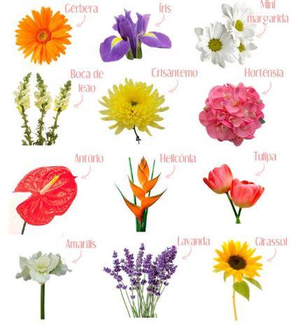 imagenes de whatsapp de flores nome das flores imagens whatsapp