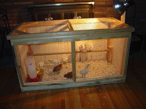 96 best images about brooder box ideas on pinterest
