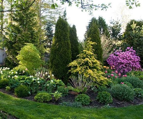 trees for backyard landscaping best 25 backyard trees ideas on pinterest