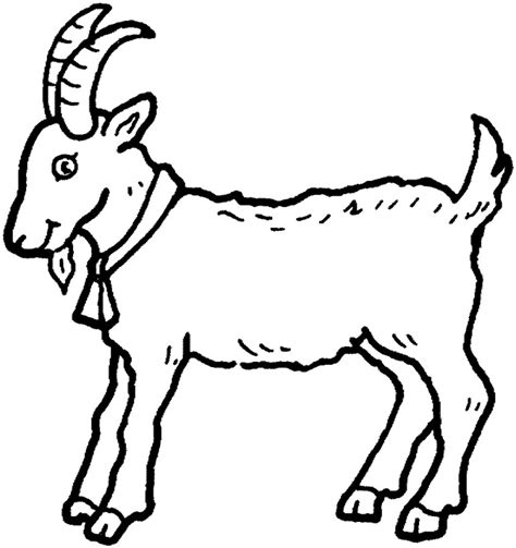goat coloring pages kindergarten bleating goats 18 goat coloring pages and pictures print