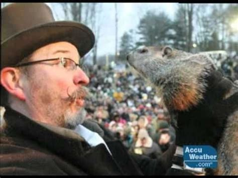 groundhog day cold out there punxsutawney phil told from his perspective