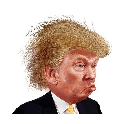 Donald Hairclip transparent png stickpng