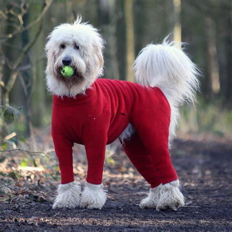 puppy in a suit polartec fleece suit rainproof breathable warm and washable equafleece