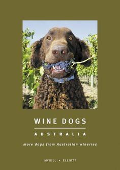 is grapes bad for dogs 1000 images about wine dogs on wineries wine and dogs