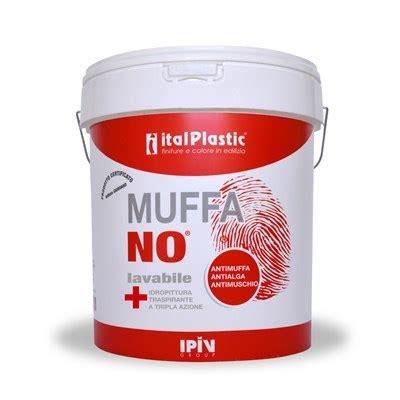 prodotti antimuffa per muri interni antimuffa igiene e risanamento dei muri colorificio